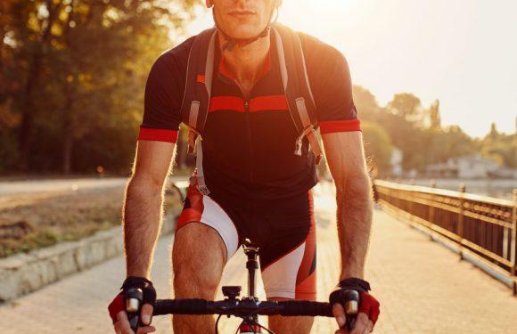 Newsed: il tuo sito di riferimento per trovare la bici usata più adatta a te