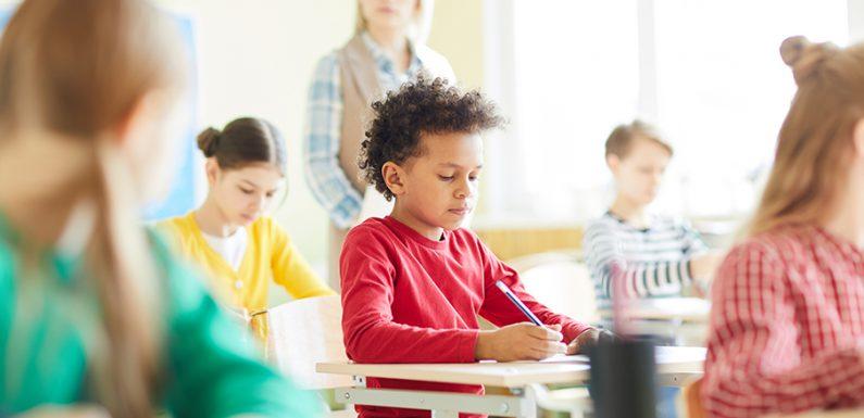 MAD online, un sistema semplice per trovare lavoro nelle scuole