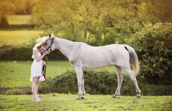 Integratori per cavalli: ecco dove puoi acquistarli