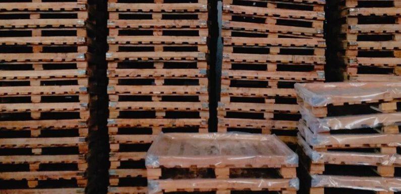 Pallets e imballaggi: a chi rivolgersi