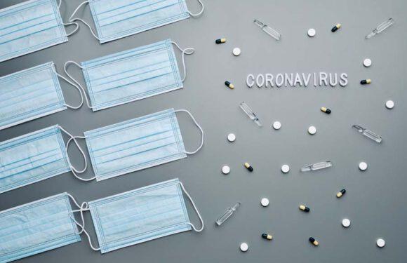 Distributori di mascherine: scopri subito a chi puoi rivolgerti